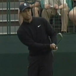 An Unauthorized Biography On Tiger Woods