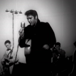 Lives On - An unauthorized tribute to Elvis Presley