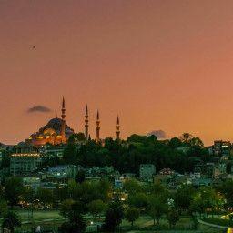 Majestic Mosques