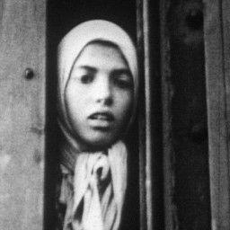 The Forgotten Genocide: Europe's Gypsies in World War II