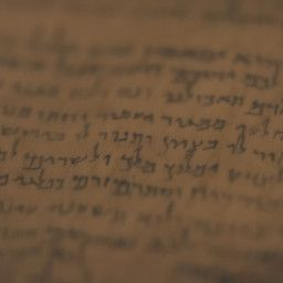 The Quest Of The Dead Sea Scrolls