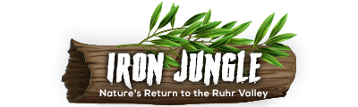 Iron Jungle - Nature's Return to the Ruhr Valley